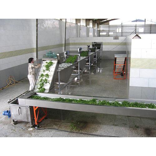 خط شستشوی میوه و سبزیجات