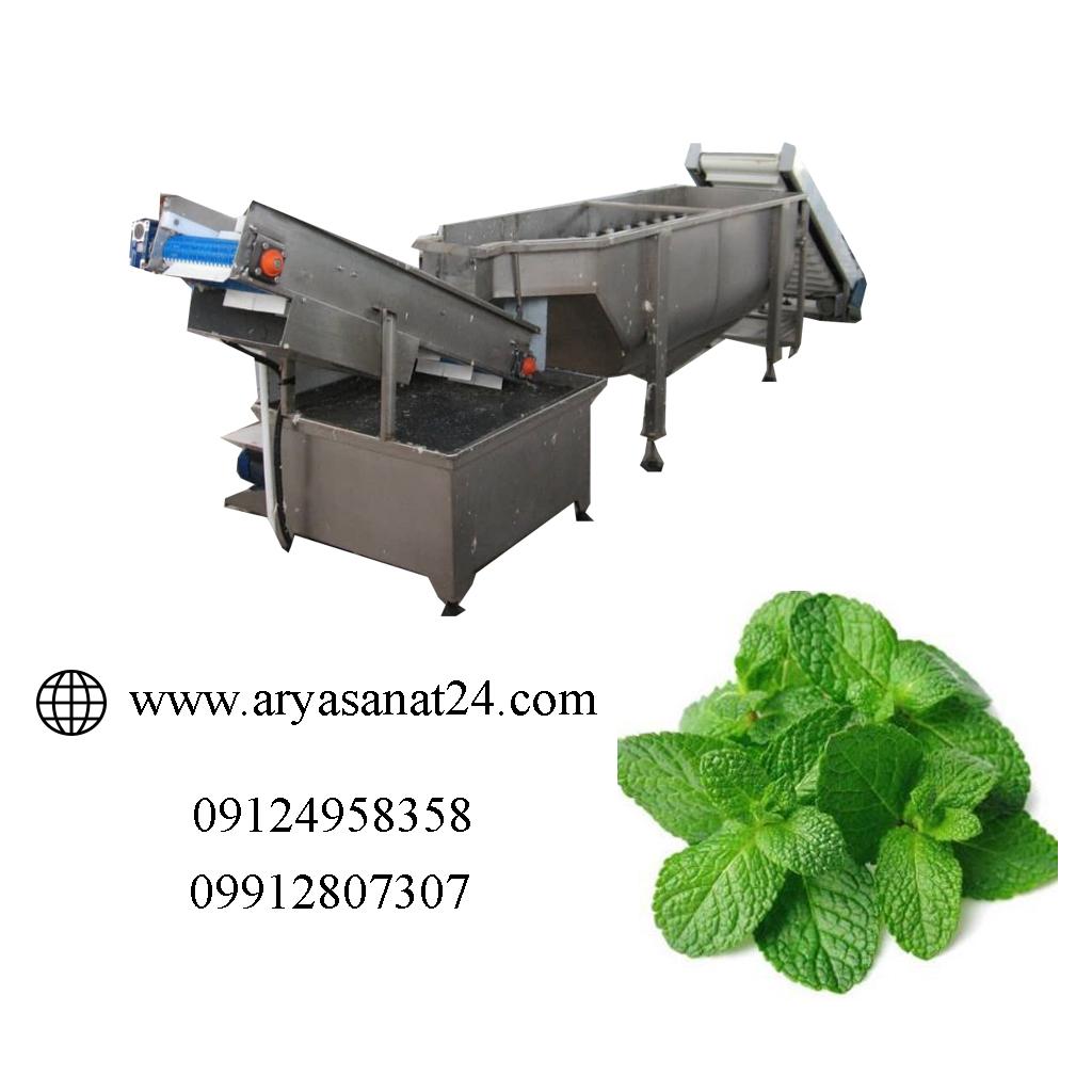 انواع خط شستشوی سبزیجات
